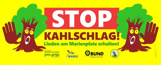 12 Linden am Marienplatz in Paderborn erhalten