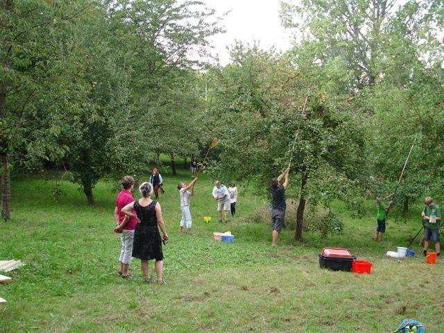 Obstbaumwiese: gemeinsam Natur erleben, gemeinsam schützen