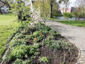 urban gardening pro gruen e.V. paderborn